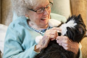 Happy old lady with cat